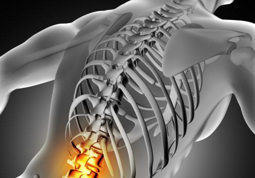 Life Kiropraktik – Föreläsning
